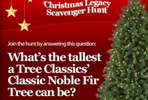 I'm dreaming of a classic Christmas / Welcome to our group board! What makes a Christmas classic for you? Hot chocolate? Chestnuts roasting on an open fire? Opening presents on Christmas morning? Putting up your tree as a family? Pin your ideas here!  / by Tree Classics