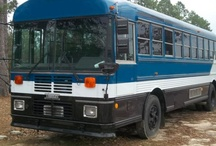 Bus y camiones