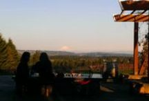 Willamette Valley Wineries  / My visits and thoughts on Oregon's Willamette Wineries.  WillametteWineryReview.com