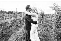Winery Dream Wedding / Tabitha & Ashley Walton's Wedding  August 23, 2014 Willow Springs Winery