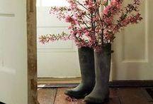 sweet spring / by Lisa Moore ~ MooreMinutes.com