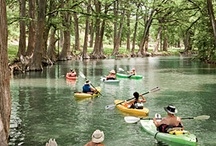 Texas Hill Country Beauty / by Lisa Price-Szot