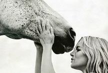 Farm Life / by Cherish @ Southern Soul Mates