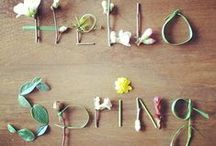 Spring / Spring and Easter crafts, decor and home inspiration! / by Linda (burlap+blue)