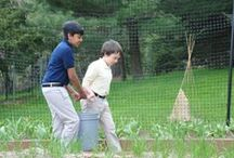 School Gardening / Ideas to help you and your garden team imagine, plan, build, and sustain a healthy school garden.  / by Longwood Gardens