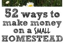 Homesteading: Cost and Funding / Costs and ways to save and make money with the homestead