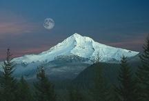 Oregon / by Dawn Rene'