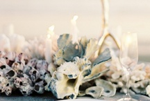 Tie the Knot-i-cal Wedding / by Stoneblossom Floral and Event Design