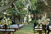 Organic Mosses Wedding / by Stoneblossom Floral and Event Design