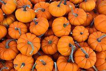 All things Fall! / by Kenzie Krause