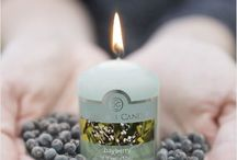 Colonial Candles / Check out Colonial Candle's fragrance filled product line!