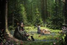 Wild / animals, animal kingdom, nature, forest animals, woodland animals, cute animals, wild animals, baby animals