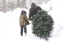 Tessuti Loves Christmas