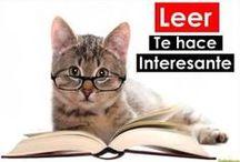 Comprensión lectora / by Escuela en la Nube