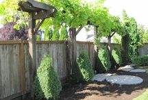Garden Arbors, Fences, Pergolas / by Tammi Van