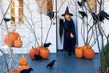 Halloween Decorations / by Christine Baldizzi