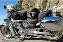 Motorcycle / 2003 HARLEY-DAVIDSON V-ROD VRSCA / by Vridetv Canada