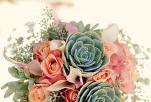Wedding / by Tess Larsen