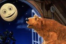 BEARS / I just really love bears