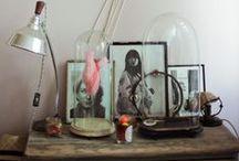 Decoración / Convierte tu casa en un hogar · Ideas y detalles de decoración / by Gnomo.eu