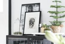 Styling and Vignettes / A board devoted to the arrangement and display of all beautiful things within a variety of spaces.
