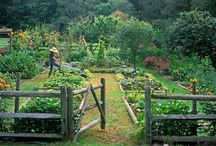 home: garden and outdoor spaces