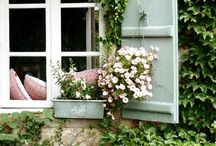 Outdoor Inspiration / by Tina Joudry