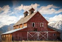 ~ Barns ~ / by Marie Day