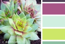 colors and themes / by Melissa Tansey