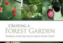 forest gardening (& farming) / by Wendell Smith