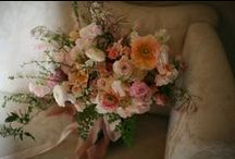 floral  / pretty flowers. / by Sarah Ducas