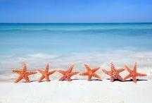 Life is a beach / by Teri Abrams