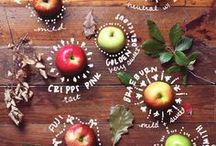 Fruits, Veggies & Sides