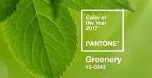 Pantone - Color of the Year 2017