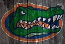 Go Gators! / by Lithea Beck