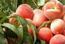Peachy Mango