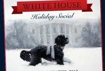 White House Holiday Social  / I had an amazing time attending the 1st ever Pinterest Holiday Social at the White House on Monday, December 17th. I was able to check out the décor, meet with the people that helped transform the White House for the holidays, join in a craft project,  — and best of all I get to share it all with you. / by Kelly Lieberman