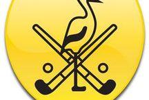 Mixed Hockeyclub Hoevelaken  www.mhch.nl / De MHCH is een middelgrote hockeyvereniging voor inwoners van de kern Hoevelaken en aangrenzende gemeenten en biedt haar leden een kwalitatief goed en toegankelijke sport dat verschillende doelgroepen in de maatschappij aanspreekt.