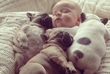 makes me smile / basically... babies and baby animals
