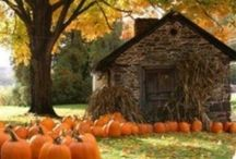 Thanksgiving & Fall / by Kris DeKleine
