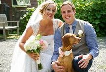 My Wedding Photography / Some of my favorite wedding photographs from NYC, the Berkshires, and destinations beyond.