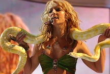 Iconic Britney Performances / A collection of the most memorable Britney performances. / by Britney Spears