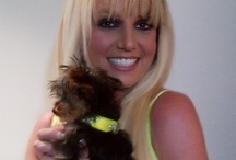 Hannah Spears / A collection of photos of the adorable Hannah Spears.  / by Britney Spears