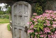Beautiful doorways, windows and shutters / by Pamela Hood