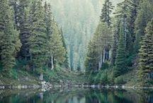 What A Wonderful World / by Kendra Ferron