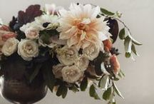 botanica... / flowers, floral motifs & foliage