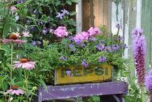 Terrazas, jardines y plantas / Decoración exterior, plantas, terrazas.