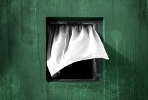windows / by Gita Karman