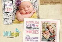 Newborn Announcements / by Shutterbug Portraits