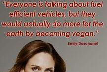 FAMOUS VEGANS AND VETETARIANS / DON'T EAT MEAT / by Karyn Wilson